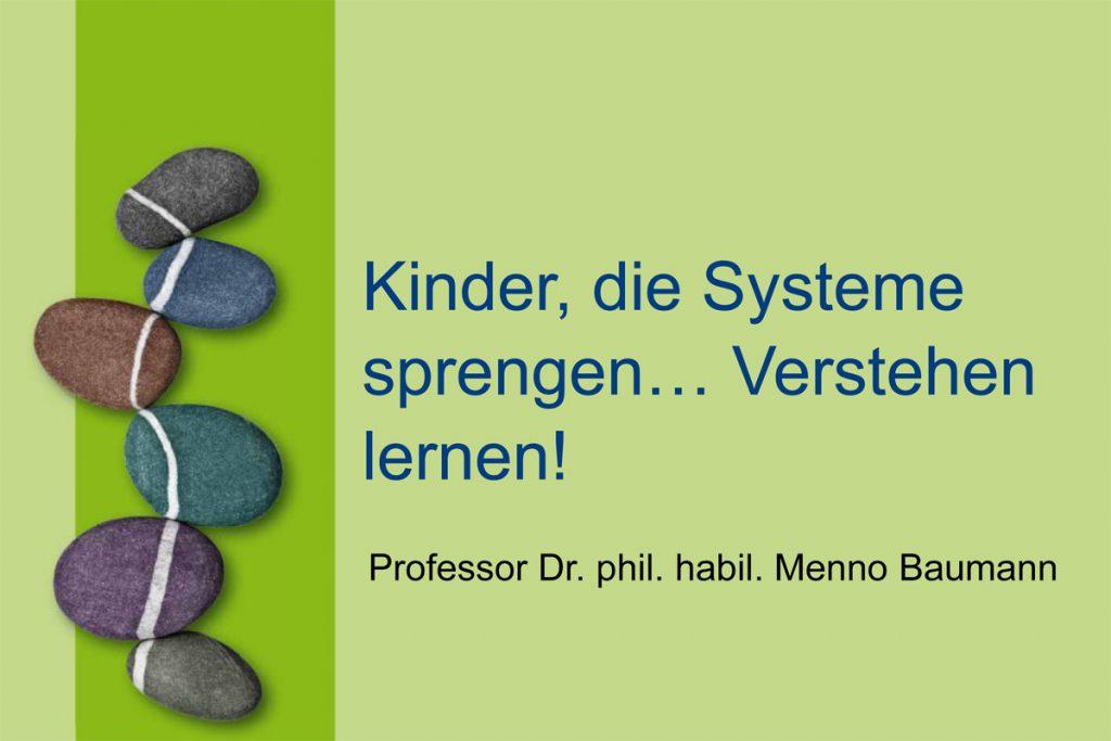 Vortrag Prof. Dr. Menno Baumann
